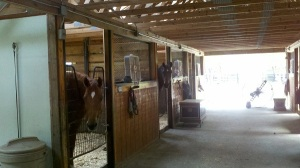 Our Automatic Mosquito Misting Systems Make Good Horse
