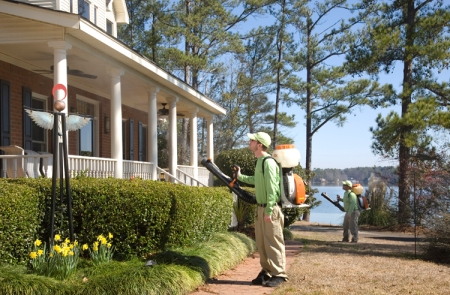 Columbia SC spider control for house or home