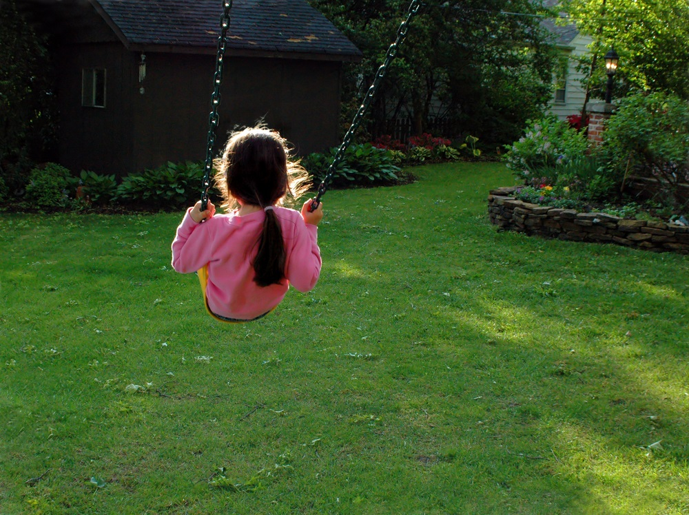 Mosquito Free Backyard Courtesy Of Mosquito Squad Of Columbia